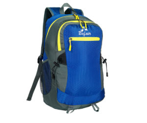 Designer Ladies Fashion Rucksack Backpacks for Men and Girls (Bh-Nh-16031-2) pictures & photos