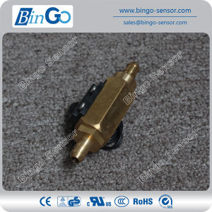 Water Heater Brass Piston Flow Switch Fs-M-Psb01-Q08 pictures & photos