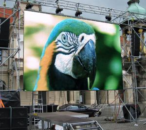Full Color Outdoor P10 LED Module Display Screen Board pictures & photos