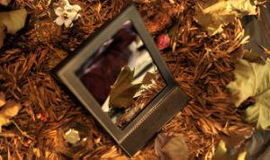 Beauty Portable Makeup Mirrors Desktop Brand Mirror pictures & photos