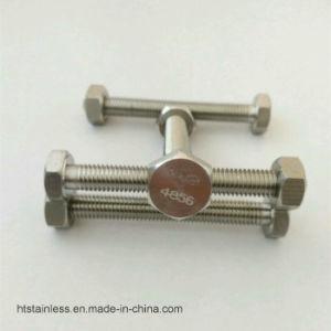 Inconel 625 Uns N06625 2.4856 Inconel625 Fastener pictures & photos