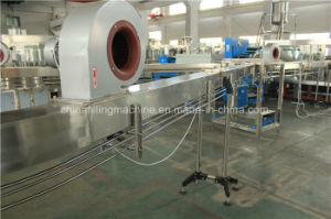Automatic Pet Bottle Juice Filling Production Line with Ce Certificate pictures & photos