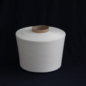 10s 100% Polyester Spun Yarns for Knitting in Raw White pictures & photos