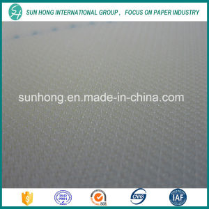 Micro Loop 100% Polyester Spiral Dryer Fabric /Screen for Paper Machine/Mill pictures & photos