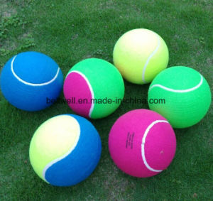 Sport Practice Exercise Tennis Ball pictures & photos