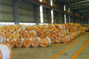 Galvanized Steel Strand - 2