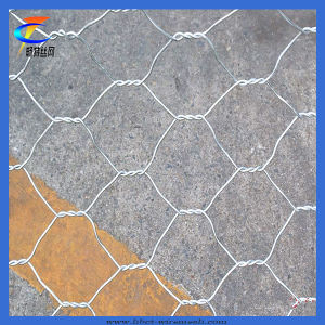 High Quality Anti-Corrosion Gabion Wire Mesh pictures & photos