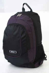 Day Hiking Sport School Travel Backpack Bag (MS1139) pictures & photos