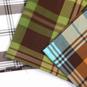 Yarn Dyed Plaid Fabric (QDFAB-9035) pictures & photos