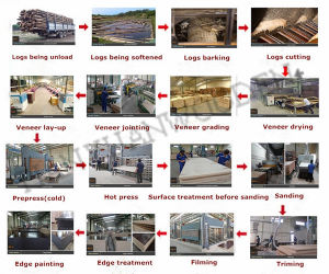 Marine Plywood / Film Faced Plywood with Brand pictures & photos
