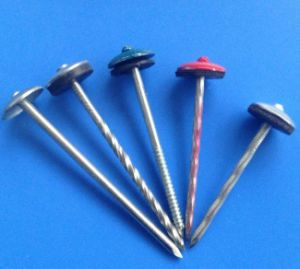 China Ring Shank Stainless Steel Roofing Nails China