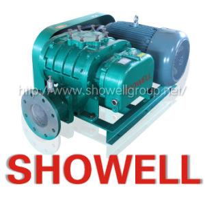 Environmental Roots Type Air Blower (XLSR)