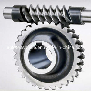 Worm Wheel Gear Worm Gear Worm Shaft Worm Wheel Shaft Worm Wheel