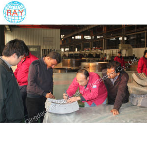 Segments TBR Tyre Tire Mould pictures & photos