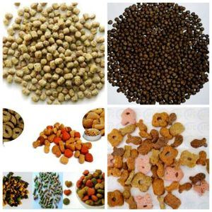 Pet Fish Dog Cat Food Machine/ Extruder/Equipment Plant (SLG65/SLG70/SLG85) pictures & photos