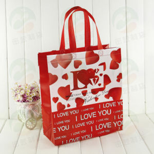 Non Woven Shopping Bag with 3D Customised Print (MY-033) pictures & photos
