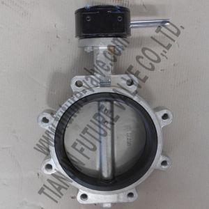 Dn200 Stainless Steel Lug Butterfly Valve with EPDM Seat (D71X-16)