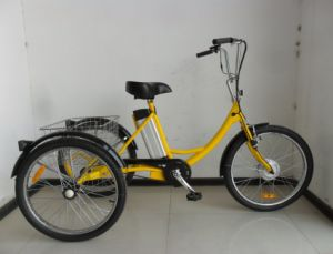 """24"""" Pedal Assisted Electric Cargo Trike pictures & photos"""