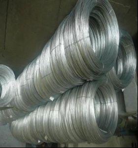 Galvanized Steel Wire - 8