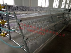 Price of a Type Best Price Poultry Farm Egg Layer Chicken Cages pictures & photos