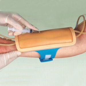 Forearm Venipuncture Training Model for Education pictures & photos