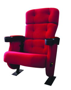 Cinema Seat Auditorium Seating Theater Chair (EB03) pictures & photos