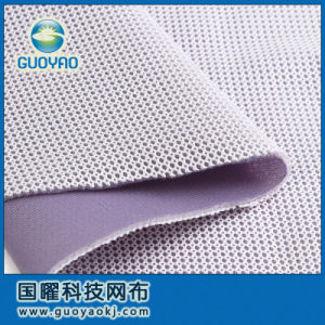 Double-Color Warp Knitted Air Mesh Fabric Gys206nt pictures & photos