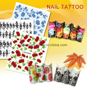 Nail Tattoo pictures & photos