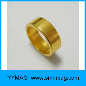 The Golden Ring NdFeB Coil Permanent Magnet pictures & photos