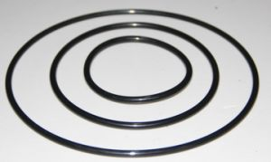 Custom High Temperature Resistant O Ring pictures & photos