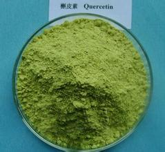 Factory Supply High Quality Quercetin 95% 98% UV CAS No: 6151-25-3