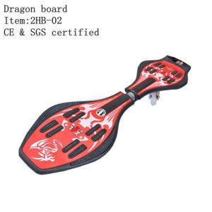 Two-Wheel Skateboard, Caster Board, Street-Surfing Board Xal (2HB-02) 1
