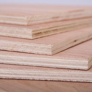 Melamine Paper Covered Plywood with Top Quality Wd150101 pictures & photos