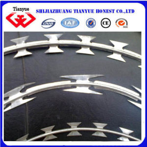 Bto22 Reliable Safety Galvanized Razor Wire pictures & photos