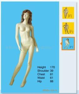 High Quality Fiberglass Mannequins Torso 1023 pictures & photos