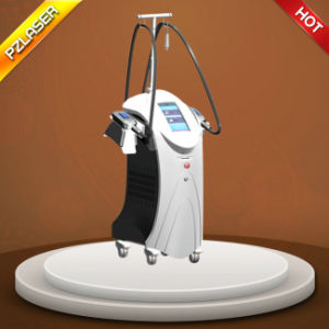 Hot! ! Double Handles Cryolipolysis Machine/Cryolipolysis Slimming Machine