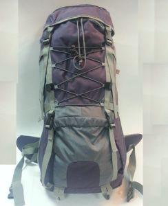Higth Qulaity and Good Price Hiking Bag Camping Bag