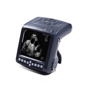Wrist Design Full Digital Vet Ultrasound Scanner (MSU1) pictures & photos