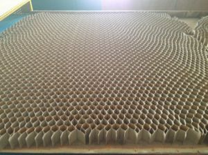 Suzhou Beecore Paper Honeycomb Core Materials pictures & photos