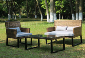 Outdoor Leisure Wicker Furniture- Rattan Sofa (F866) pictures & photos