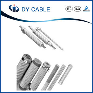 Overhead Cable All Aluminum AAC Conductor pictures & photos