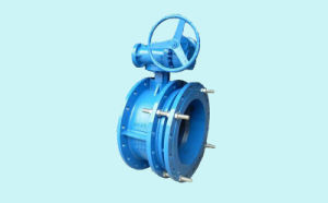 Telescopic Flange Butterfly Valve