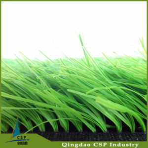 Artificial Grass Manufacture in Qingdao Csp pictures & photos
