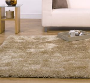 Cozy Shag Rug, 100% Polyester Material pictures & photos
