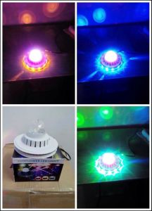 China Factory Christmas Lights Light Blue pictures & photos