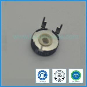 10mm Rotary Potentiometer Spain Potentiometer Phier Potentiometer Trimmer Potentiometer 10k 100k pictures & photos