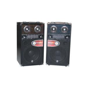 Professional Stage Active Speaker\Active Speaker (D-10)