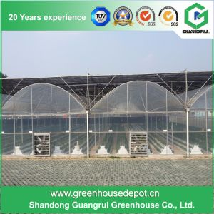 Vegetables/Fruit/Garden/Flowers/Farm Multi Span Plastic Greenhouses pictures & photos