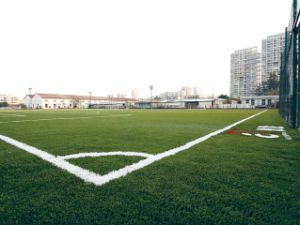 Artificial Grass for Football Area
