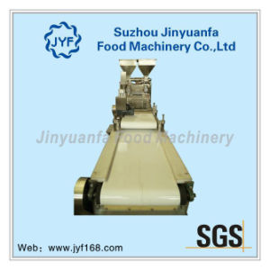 Chocolate Particles Forming Machine/Oatmeal Chocolate Machine pictures & photos